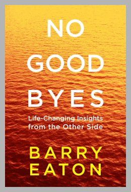No Goodbyes : Life-Changing Insights from the Other Side<br> Barry Eaton<br><span style='text-align: center;'>$15.14 walmart.com</span>